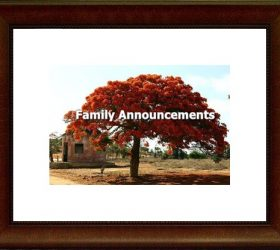 Family Announcements300x199